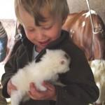 Kuscheln mit Kätzchen