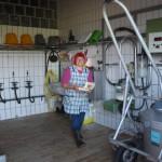 Bei der Arbeit in der Milchküche