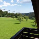 der Waldblick - vom Balkon aus