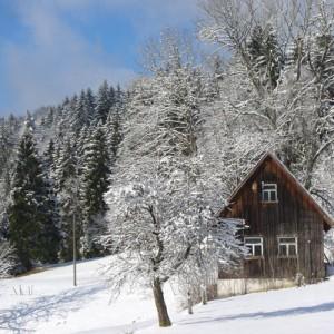 Winter in Tennenbronn