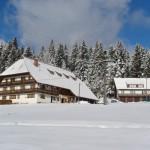 Unterfalkenhof im Winter