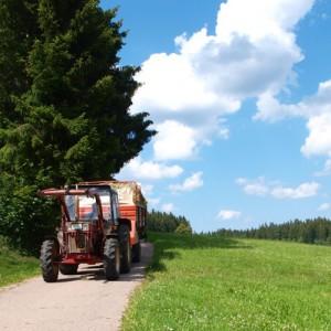 Familienferien im Schwarzwald - Traktor fahren