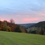 Blick vom Unterfalkenhof Richtung Tal