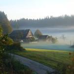 Der Unterfalkenhof am frühen Morgen